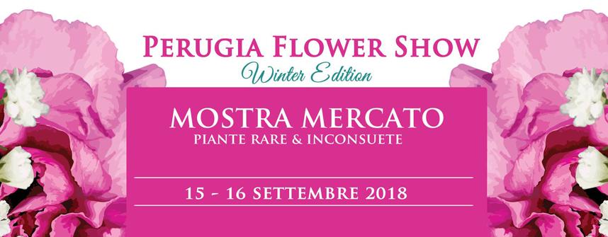Perugia Flower Sho 2018