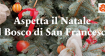 NATALE AL BOSCO DI SAN FRANCESCO